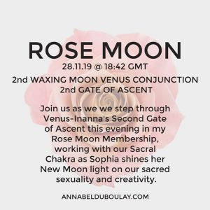 Rose Moon 28.11.19 - Annabel Du Boulay