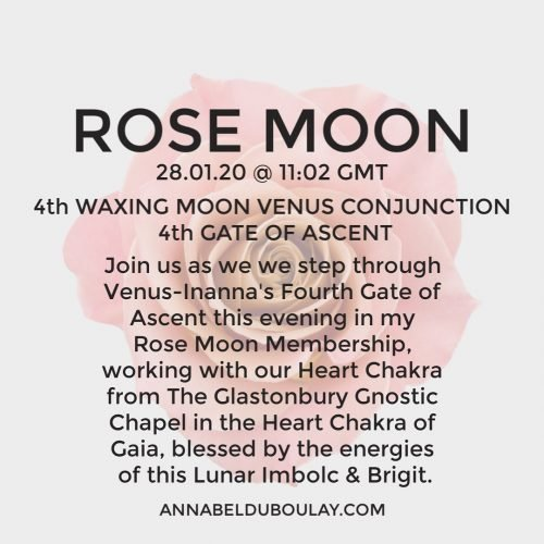Rose Moon 28.01.20 Annabel Du Boulay