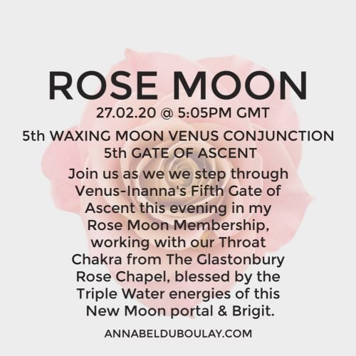 Rose Moon 27.02.20 Annabel du Boulay