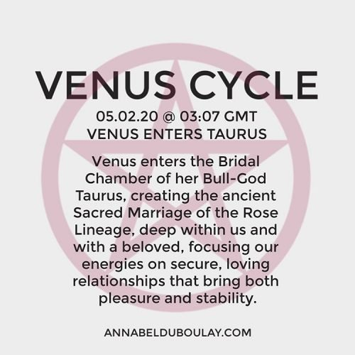 Venus Cycle 05.03.20 Annabel Du Boulay
