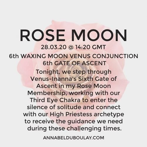 Rose Moon 28.03.20 Annabel Du Boulay